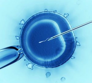 IVF IUI support in Portland
